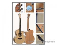 Deviser guitars 40